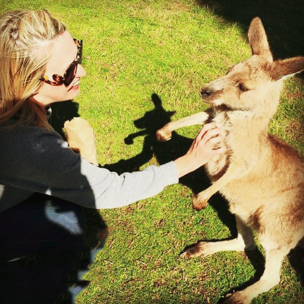 Australia_kangaroo_experience