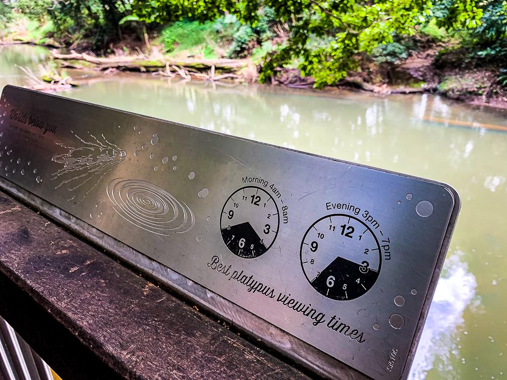 Platypus_Clock_TImer_Broken_River