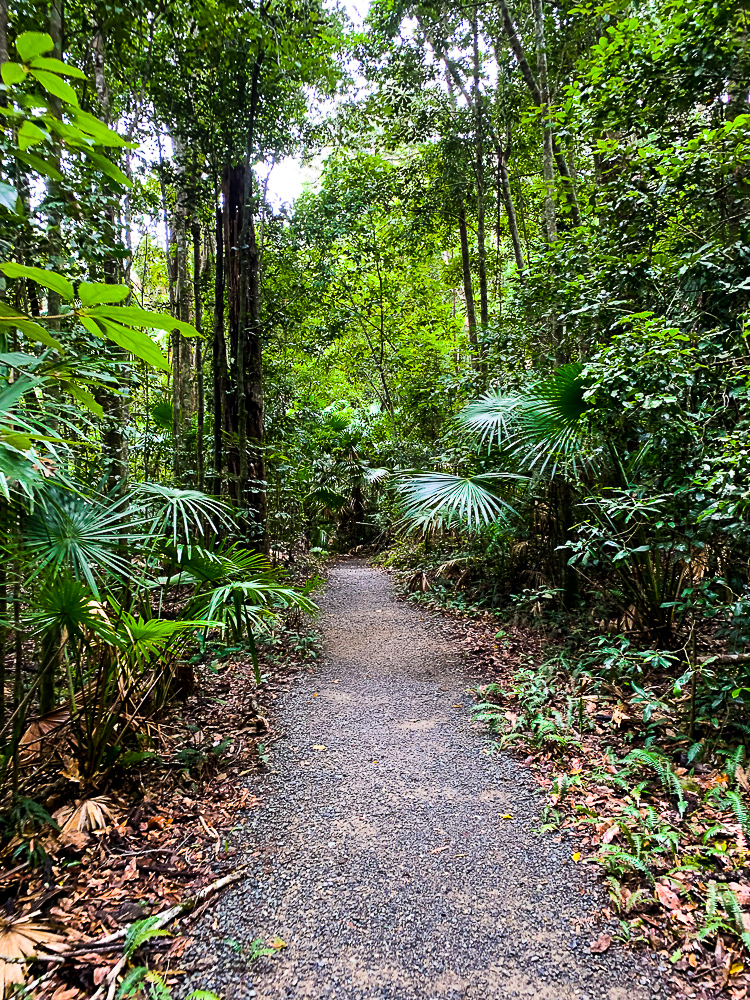 Mackay_Bushwalking_Trail