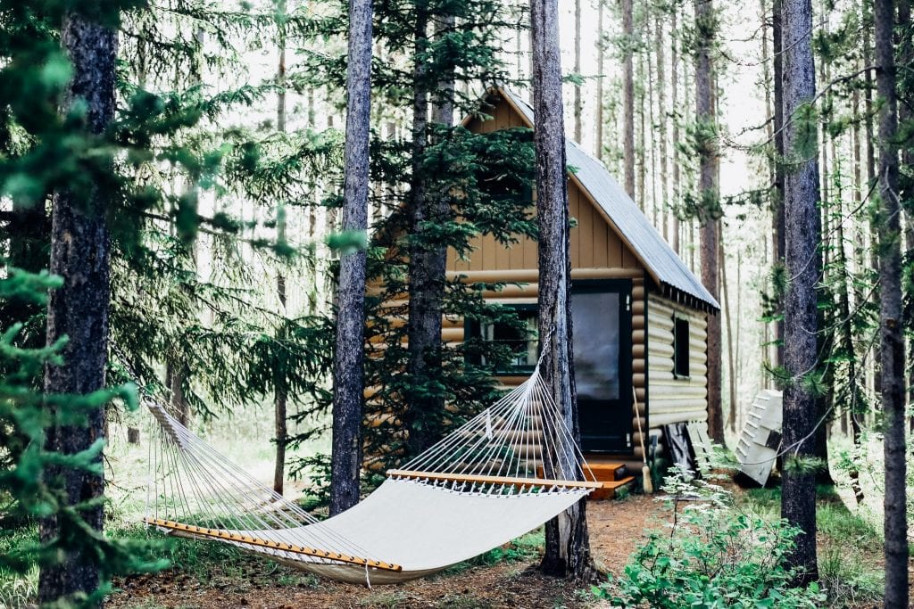 hammock-and-cabin-in-the-woods