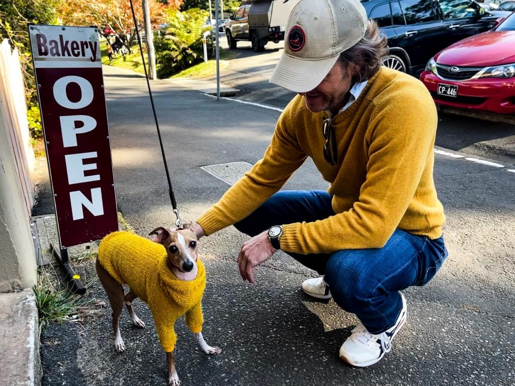 A man pats a dog both in yellow sweaters